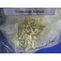 trenbolone delts