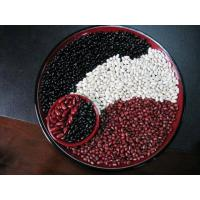 Wholesale Red& White&Speckled  KIdney Bean from china suppliers