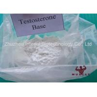 Professional Strongest Testosterone Steroid Testosterone Base Powder CAS 58-22-0