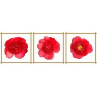 3 panel square canvas prints with red flowers