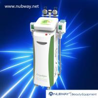 China Meticulously-released!!! The most featured Cryolipolysis Slimming Product Green Vertical wholesale