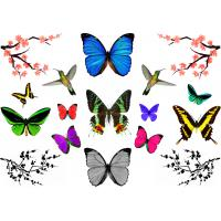 Wholesale Colorful children Temporary Tattoo Sticker , metallic body tattoo from china suppliers