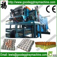 China High efficiency Paper egg tray injection molding production line on sale