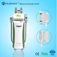 Wholesale Cryo Freeze Fat Beauty Machine High Quality Cryolipolysis from china suppliers