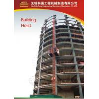 Wholesale Painted / Hot Dipped Zinc Construction Material Hoists For Electric Power Plants from china suppliers
