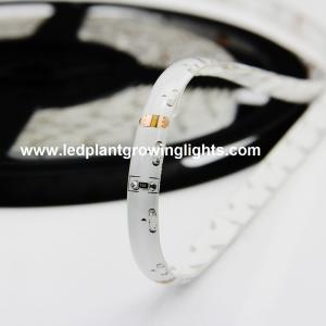 Wholesale IP68 60 / 120 SMD Flexible Led Strip Lights 12 Volt , 335 Side Emitting Led strip lights from china suppliers