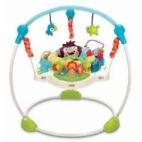 Buy cheap Fisher-Price Precious Planet Jumperoo from wholesalers