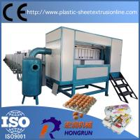 China 3000pcs/Hr Paper Pulp Molding Machinery with Single Layer Mental Drying Line , paper egg tray machine on sale