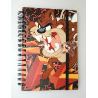 Wholesale OK3D factory wholesale A4/A5/A6 lenticular flip cover 3d notebook with spiral wire lenticular cover notebook from china suppliers