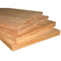 Wholesale poplar veneer plywood from china suppliers