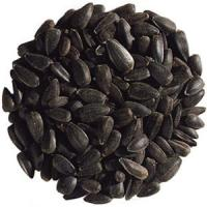Sunflower Seeds American type 5009 20/64