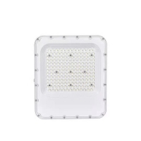 Wholesale COB Ip66 Led Spot Flood Lights 30w 100w 150w And 200w from china suppliers