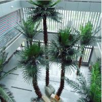 China Indoor Fake Preserved Palm Tree on sale
