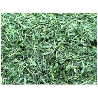 Wholesale Barley grass leaf, cut, powder, powder extract from china suppliers