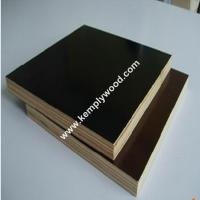 Construction Film Faced Plywood WBP / Marine/Recycle Plywood (Poplar, Combi, Birch Core)