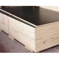 cheap price birch lowes 18mm marine plywood for concrete formwork laminated film faced plywood