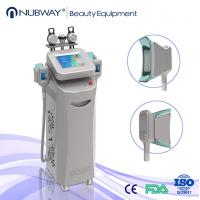 Wholesale New style Cryolipolysis Slimming Machine with pain less from china suppliers