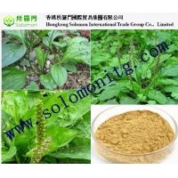 botanical extract herb remedi images - images of botanical ...