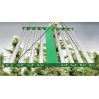 Wholesale 600W 54w 60w Indoor LED Grow Light IP65 Full Spectrum For Agriculture Plant from china suppliers