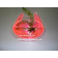 Plastic display bowls images images of plastic display bowls for Plastic fish bowls bulk