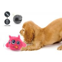 Wholesale Non Toxic Dog Entertainment Toys , Indoor Plastic Material Pet Dog Toy from china suppliers
