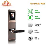 Wholesale Face And Fingerprint Entry Door Lock With With Anti Peephole Structure from china suppliers