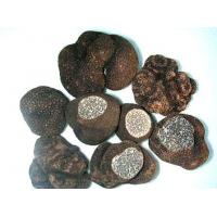 Wholesale FrozenMushroomSeries Frozen Truffles from china suppliers