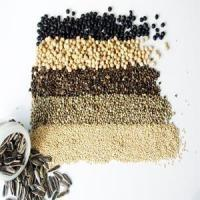 Wholesale Foodstuff Beans & Seeds Genus Detail ItemNo.:43Product Name:Foodstuff Seeds from china suppliers