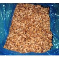 Wholesale IQF nameko mushroom whole from china suppliers
