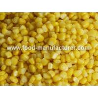 Wholesale Freeze Dried Vegetables Freeze Dried Sweet Corn Kernel from china suppliers