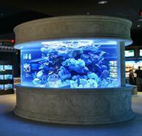 Wholesale shark tank from china suppliers