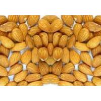 Wholesale Almond Kernels from china suppliers
