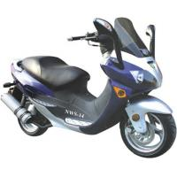 Wholesale Scooter NWS-14 from china suppliers