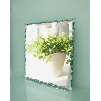 China Clear Float Glass  Mirrors wholesale