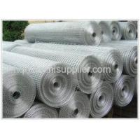 Wholesale Welded Wire Mesh Galvanized Welded Wire Mesh from china suppliers
