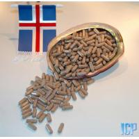 Wholesale Iceland Sea Cucumber Nutrition Capsules  (Cucumara frondosa) from china suppliers