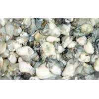 Wholesale |Other>>Oyster from china suppliers