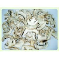 Wholesale Dried Mushroom Champignon Slice TC0302-2 from china suppliers