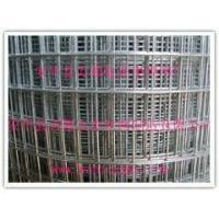 Wholesale Zinc galvanized steel mesh Welded wire mesh from china suppliers