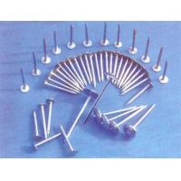 Flat Head Roofing Nail Quality Flat Head Roofing Nail