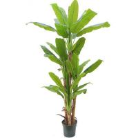 Artificial Large Trees 2.5m Y8328-34-4TS