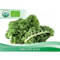 Wholesale Organic Kale from china suppliers