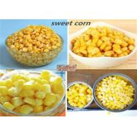 Wholesale Good Taste Canned Sweet Corn Kernels In Brine 425g High Temperature Sterilization from china suppliers