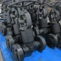 Cryogenic Globe Forged Steel Valve Reduced Bore LF2 LF3 ISO 15848 LNG
