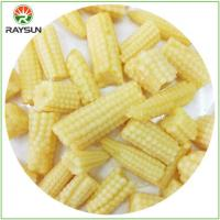 Wholesale Can Of Cut Baby Corn from china suppliers