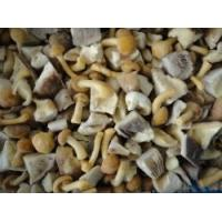 Wholesale Frozen Blended mushroom from china suppliers