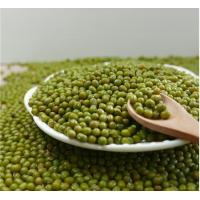 Wholesale Agricultural products Green Mung Bean from china suppliers