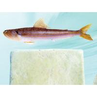 Wholesale surimi Product name:synodontidae paste from china suppliers