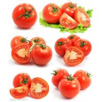 Wholesale Tomato Paste CB/HB 28/30,30/32 36/38 from china suppliers