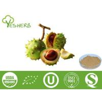 Wholesale Plant Extracts Horse Chestnut Seed Extract - Aescin 20% from china suppliers
